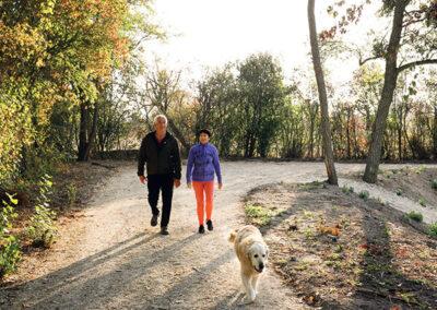 Walks / Hikes