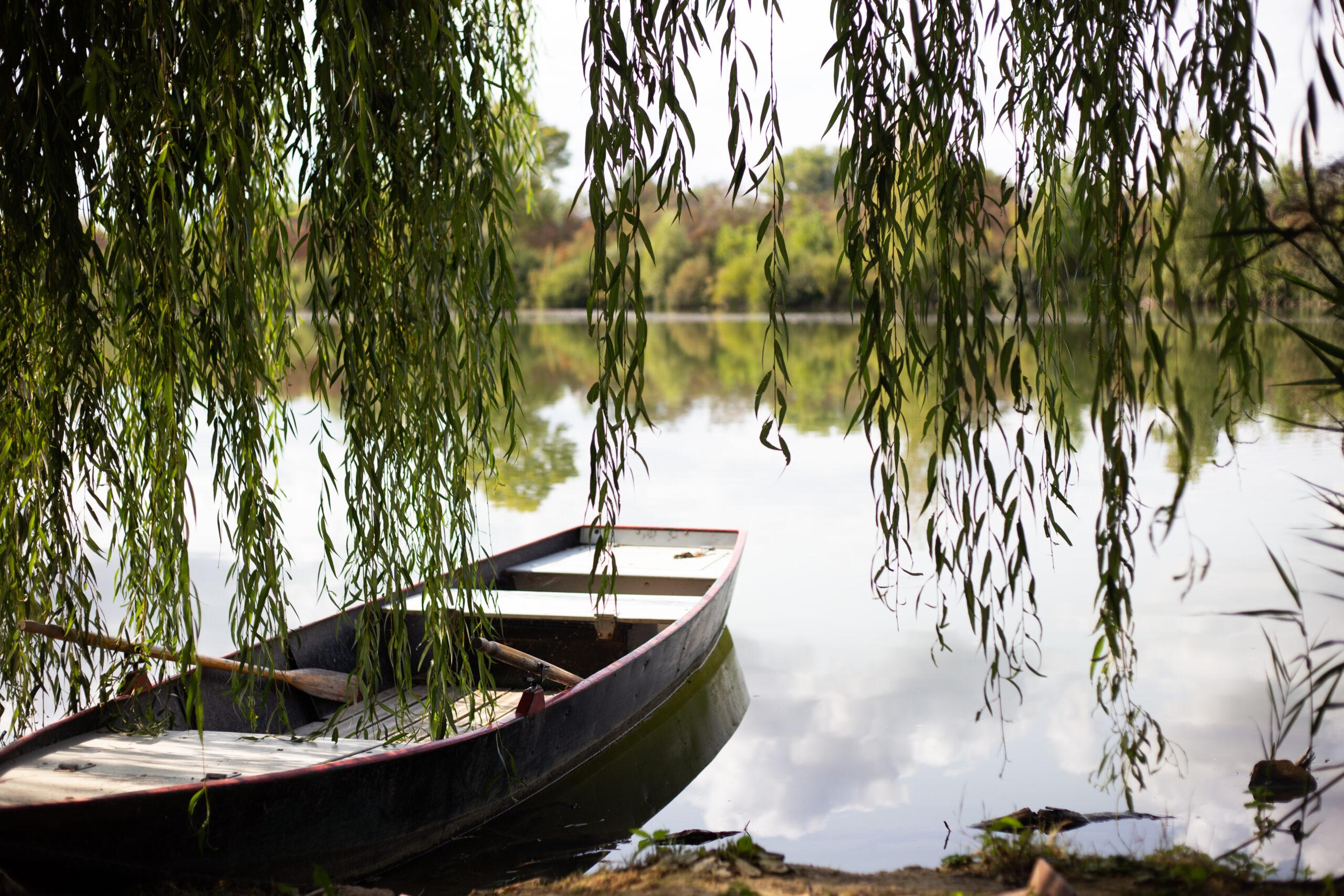 Barque-etangsdelabassee