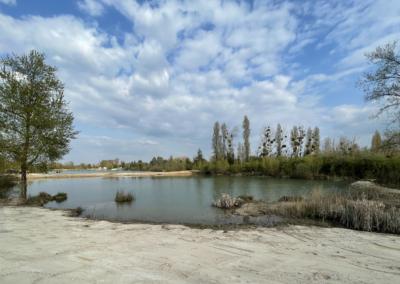 Etang-la-roselière-etangsdelabassee